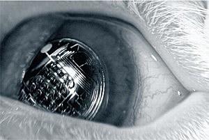 Information In Your Eye University of Washington