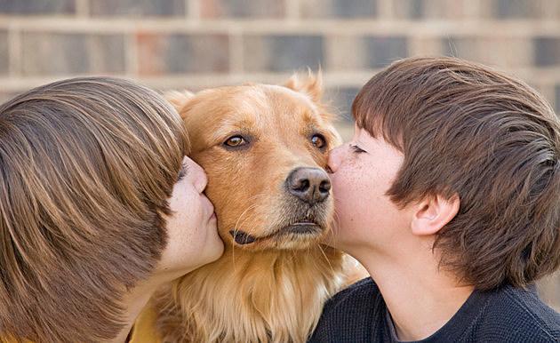 Boys Kissing a Dog