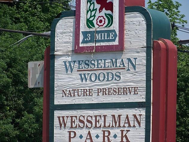 Wesselman Park Entrance Sign