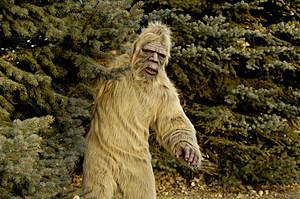 Bigfoot Outdoors