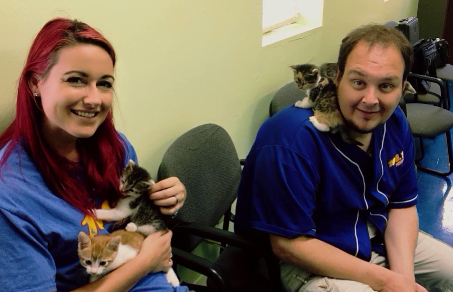 Rob, Kat & Kittens